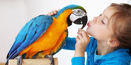 parrot psychic
